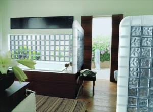 Bathroom walls with frosted and clear glass blocks