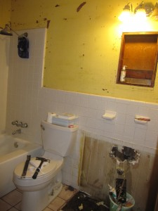 texas bathroom during the demolition process