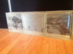 Nature scene on etched glass blocks that will be used as a transom window