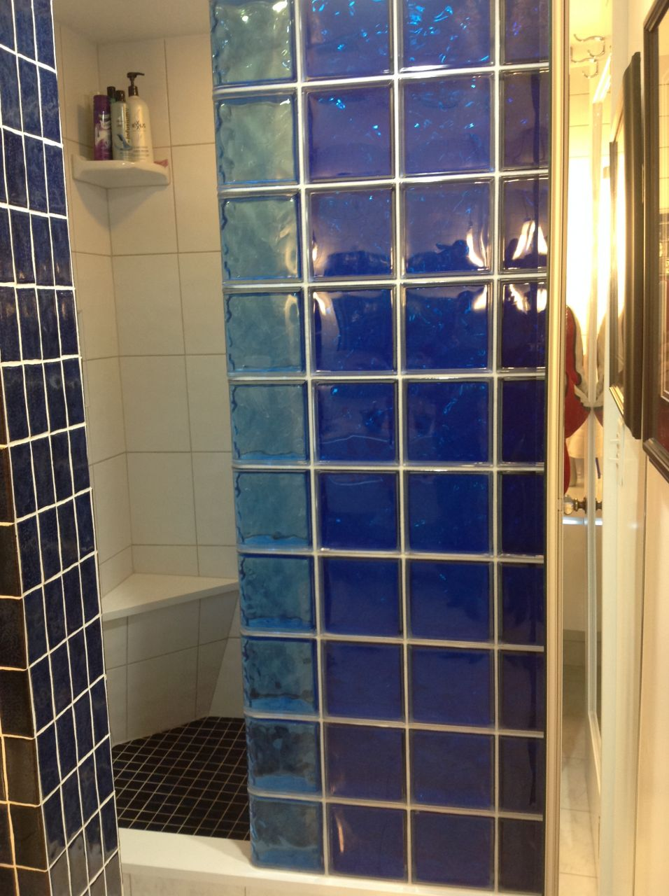 Colored glass block shower & partition walls in a condo remodeling ...
