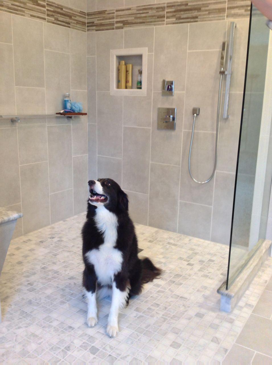 San Diego Hotel Inspires An Open Design Bath Remodel In Cleveland - Bathroom remodel cleveland