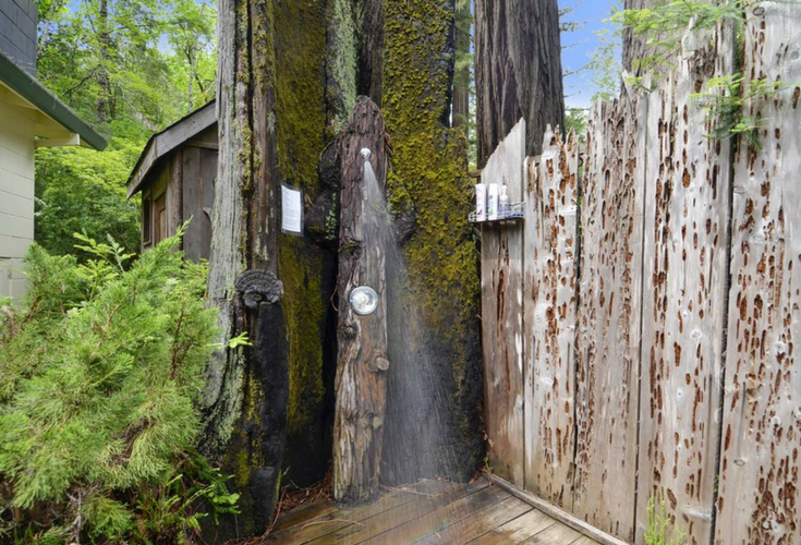 Outdoor shower out of the middle of a Sequoia Tree in California