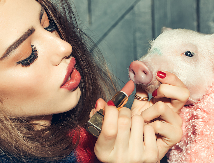 putting lipstick on a pig | Innovate Building Solutions