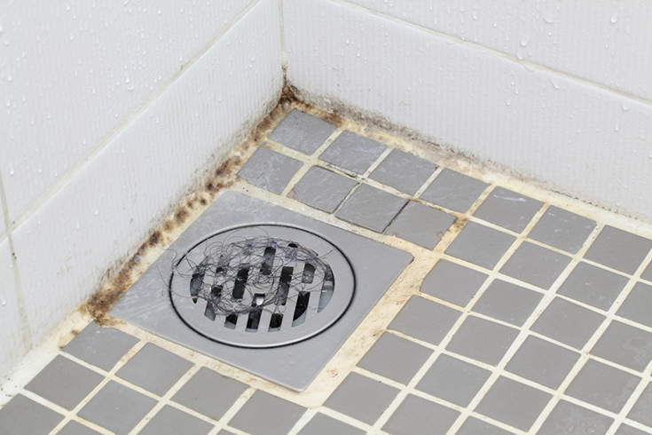 Disadvantage 6 tile shower floor with moldy bacteria filled mosais grout joints | Innovate Building Solutions | Innovate Building Soltuions | #Tileshower #BathroomRemodel #GroutJoints