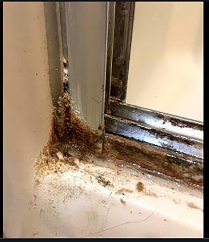 Advantage 6 no rusty metal track at bottom credit www.myreallifeathome.com   Innovate Building Solutions #Rustydoor #Glassdoorcleaner #Cleaningbaathroom